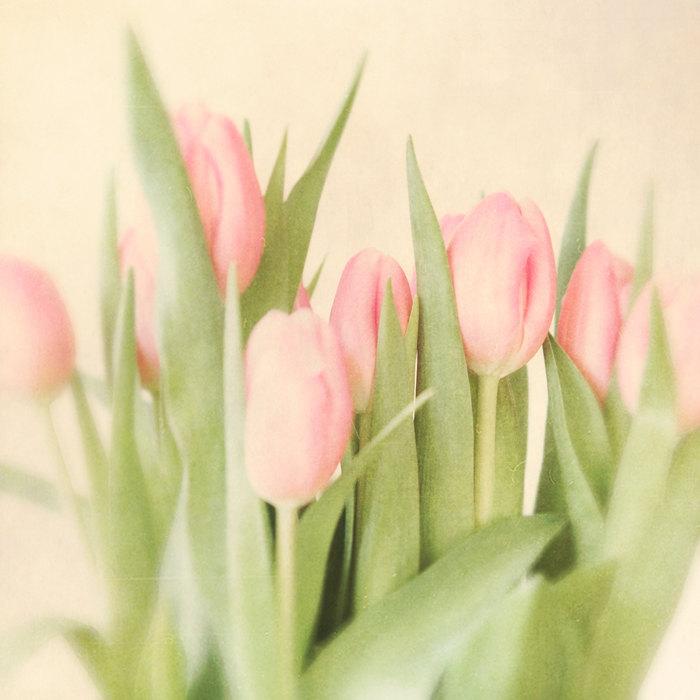 Spring-Interior-Design-Ideas_Spring flowers tulips